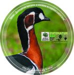 Sticker of a Red-Breasted Goose