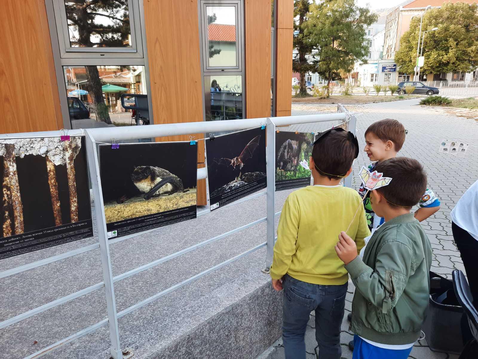Децата разглеждаха нашата прилепна изложба