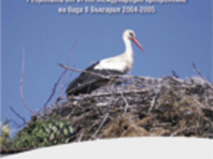 DISTRIBUTION AND NUMBERS OF THE WHITE STORK (CICONIA CICONIA L.) IN SELECTED BULGARIAN MUNICIPALITIES – RESULTS OF THE 6TH INTERNATIONAL CENSUS OF THE SPECIES IN BULGARIA 2004-2005